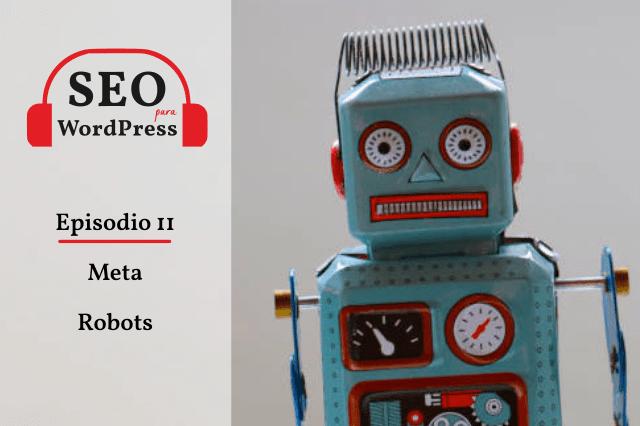 Episodio 11. Meta robots