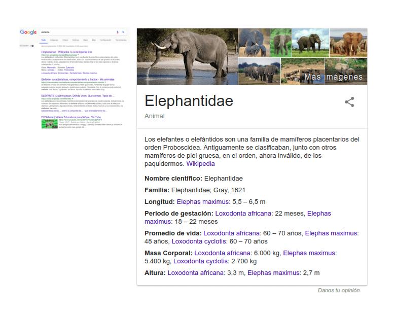 Gráfico del conocimiento de Google